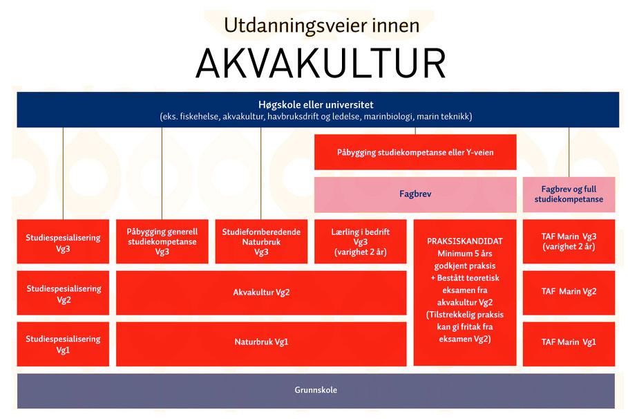 plansje-akvakultur-utdanning